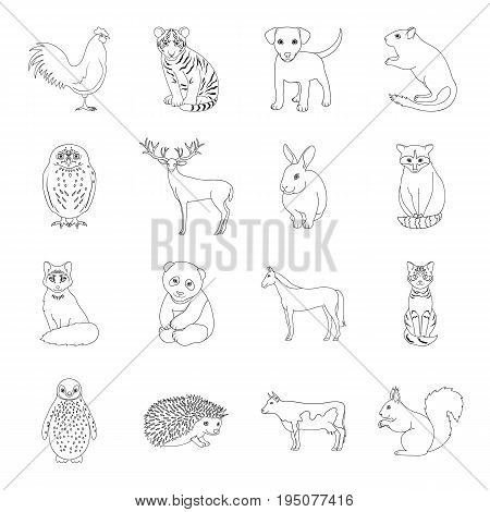 Deer, tiger, cow, cat, rooster, owl and other animal species.Animals set collection icons in line style vector symbol stock illustration .