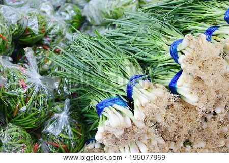 Spring onion and chilli in fresh market Healthy vegetables herb. material raw for cooking. texture background. Scientific name Allium ascalonicum.