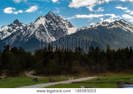 Equestrian tours in the mountains of Arkhyz against the background of the peaks