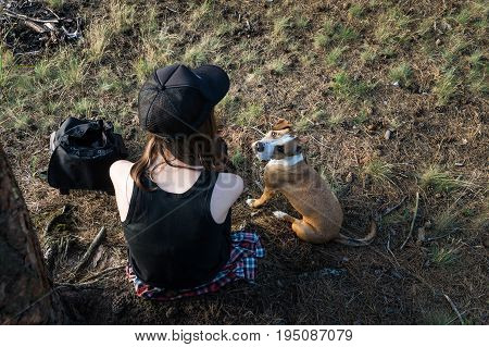 Female hiker and dog take rest under tree in forest. Young woman and staffordshire terrier puppy sit under fur tree in camping place outdoors