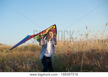 wary little boy with a kite on his shoulders looking up standing among yellow grass on the field