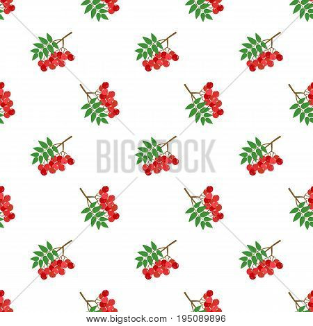 Seamless Background Image Colorful Tropical Fruit Red Rowan Berry