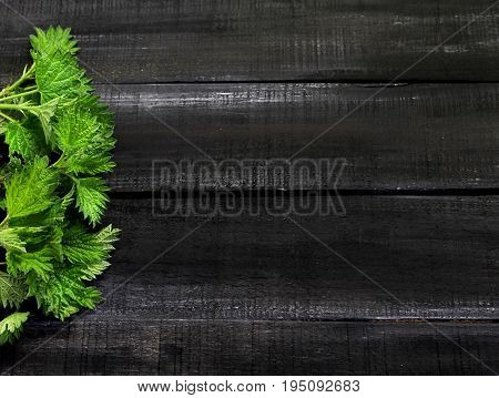 Fresh green nettle close-up on a wooden background with space for your text, from nettles make therapeutic tea which is used to treat a variety of diseases and also strengthen the walls of blood vessels and purify the blood.