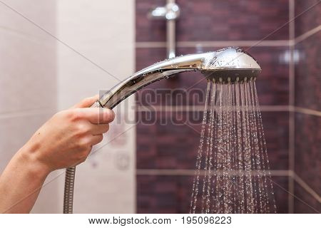 Water streams flow out of working shower head right down.
