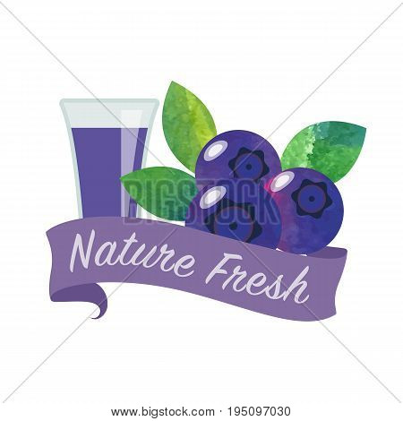 Colorful Watercolor Texture Vector Nature Organic Fresh Fruit Juice Banner Blueberry