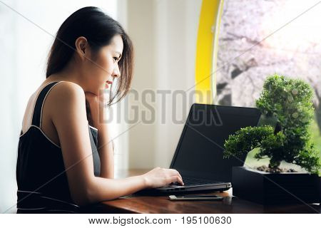 Asian officer take relax with computer note book and get sunlight from windows Japan and sakura concept