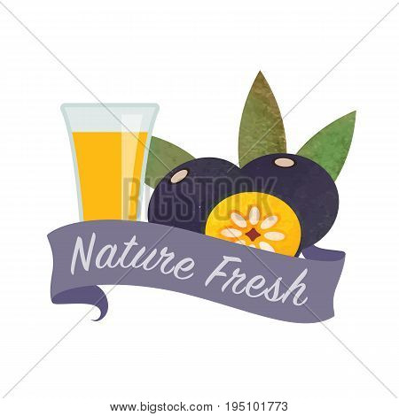 Colorful Watercolor Texture Vector Nature Organic Fresh Fruit Juice Banner Amazon Acai