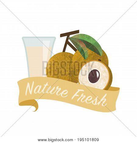 Colorful Watercolor Texture Vector Nature Organic Fresh Fruit Juice Banner Longan