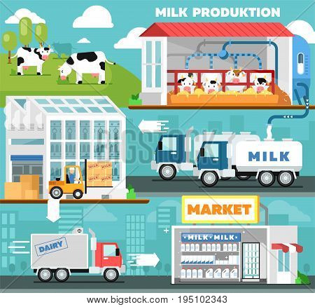 Eco milk production infographics in flat style. Cow farm, transportation and processing on milk factory, fresh and healthy dairy product distribution in retail. Milk manufacturing vector illustration
