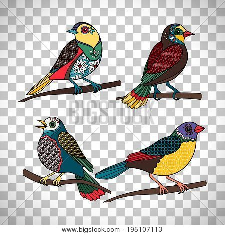 Hand drawn birds. Vector colored birds with floral patterns isolated on transparent background