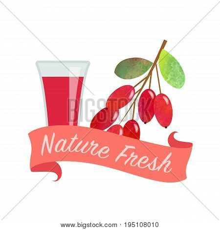 Colorful Watercolor Texture Vector Nature Organic Fresh Fruit Juice Banner Barberry
