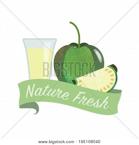 Colorful Watercolor Texture Vector Nature Organic Fresh Fruit Juice Banner Tomatillo
