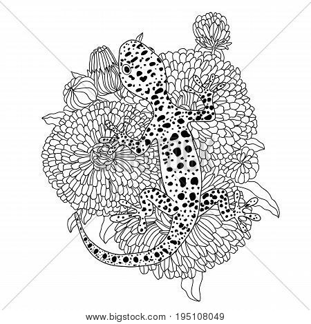 Vector lizard realistic and detailed illustration for a coloring book for adults. Hand drawn coloring page.