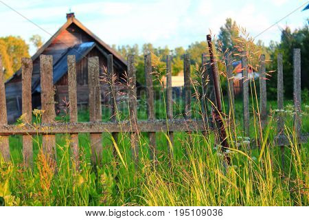 Wooden house in the village. Summer in the village. The old wooden fence. The grass near the fence. Summer evening in the village. Rural landscape