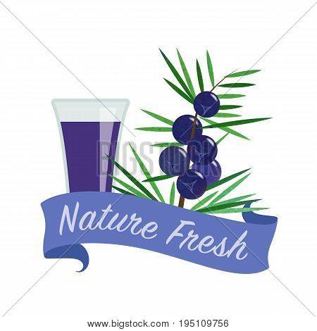 Colorful Watercolor Texture Vector Nature Organic Fresh Fruit Juice Banner Juniper Berry