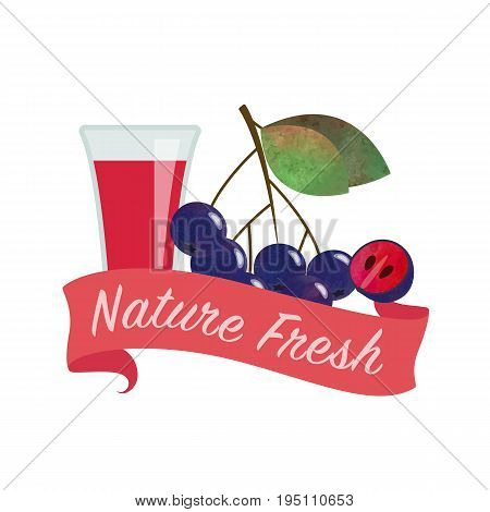 Colorful watercolor texture vector nature organic fresh fruit juice banner black chokeberry aronia berry