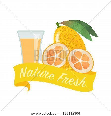Colorful Watercolor Texture Vector Nature Organic Fresh Fruit Juice Banner Kumquat