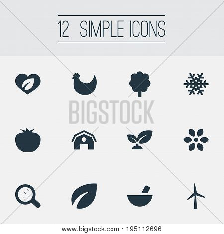 Vector Illustration Set Of Simple Ecology Icons. Elements Spring, Frost, Organic And Other Synonyms Pounder, Hangar And Turbine.