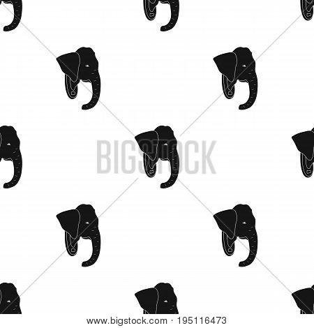 Stuffed elephant head.African safari single icon in black style vector symbol stock illustration .