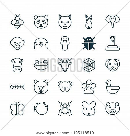 Zoology Icons Set. Collection Of Serpent, Goose, Bunny And Other Elements. Also Includes Symbols Such As Bone, Animal, Toad.