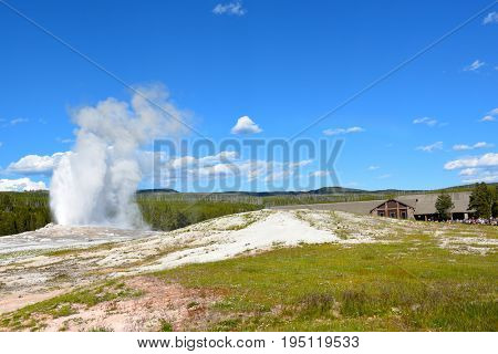 Old Faithful Geyser in Yellowstone National Park. The reliability of Old Faithful can be attributed to the fact that it is not connected to any other thermal features.