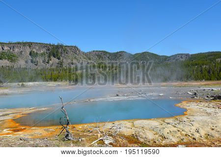 Black Opal Pool, in Biscuit Basin, Yellowstone National Park.