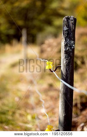 Electric Fencing Around A Pasture For Animals
