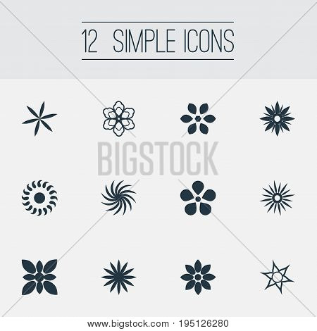 Vector Illustration Set Of Simple Flower Icons. Elements Delphinium, Floral, Pattern And Other Synonyms Gerberas, Alstroemeria And Laurel.