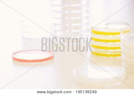 Red and yellow petri dishes on table in laboratory