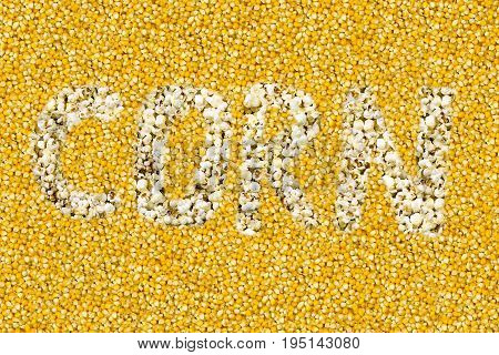 word corn inscription is composed of popcorn on a yellow yellow grain background