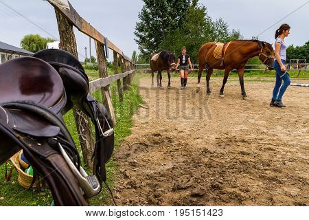 Vynohradiv Ukraine - July 12 2017: Girls lead the horses during a vacation in the summer children's equestrian sports camp.