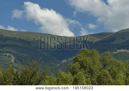 Majestic mountain top overgrown with coniferous forest, valley and grass glade, Central Balkan mountain, Stara Planina, Bulgaria poster