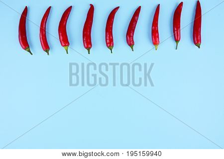 Red chilli papper on trendy blue background. Flat lay style. Colorful diet and healthy food concept.
