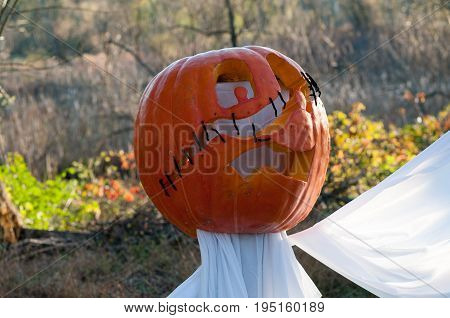 CHADDS FORD, PA - OCTOBER 26: View of The Great Pumpkin Carve carving contest on October 26, 2013