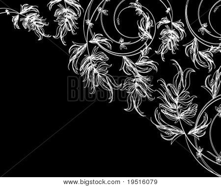 White floral sketch on a black background