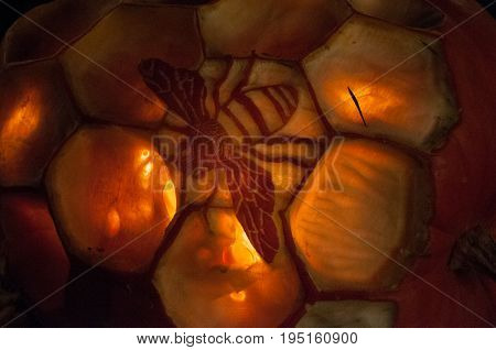 CHADDS FORD, PA - OCTOBER 26: View of Honey Bee Pumpkin at The Great Pumpkin Carve carving contest on October 26, 2013
