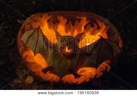 CHADDS FORD, PA - OCTOBER 26: View of Bat Pumpkin at The Great Pumpkin Carve carving contest on October 26, 2013