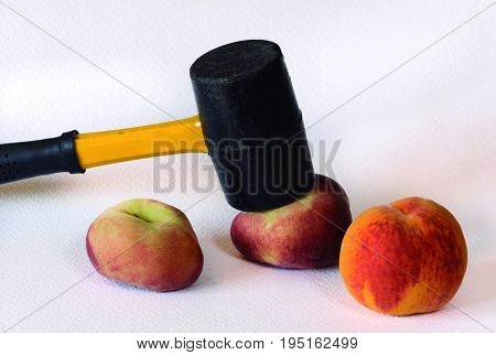 Variety of peach which appears to have been flattened.
