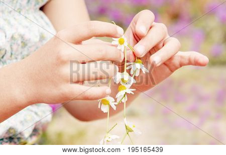 Closeup of girl's hands making flower necklace at field