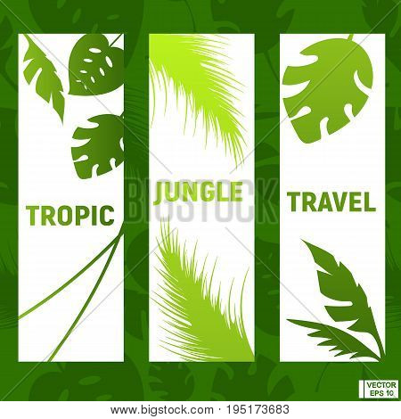 Tropics, Jungle, Travel, Tourism