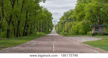 Lush green forest on either side of the road leaving in and out of Chernobyl