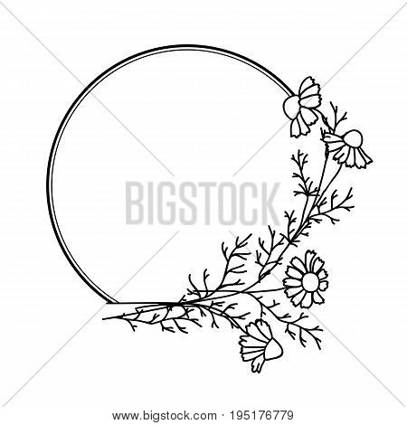 Elegant black and white frame with daisies for brochure design booklets wedding albums invitations and other festive products.