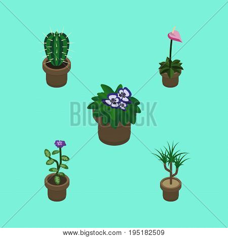 Isometric Flower Set Of Flowerpot, Flower, Houseplant And Other Vector Objects. Also Includes Flower, Flowerpot, Botany Elements.