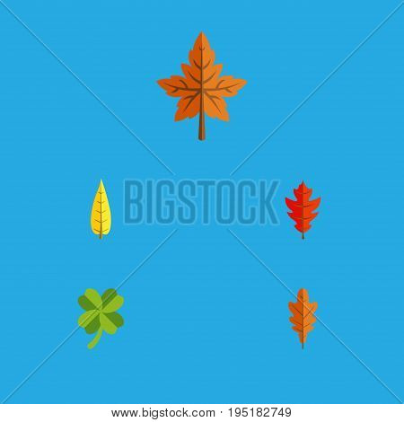 Flat Icon Foliage Set Of Maple, Leafage, Alder And Other Vector Objects. Also Includes Leaf, Frond, Alder Elements.