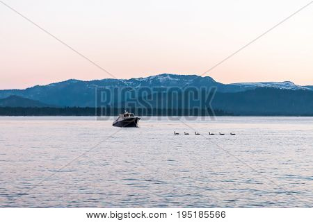 View of Ducks and Small Boat on a Blue Lake With Mountians in Background