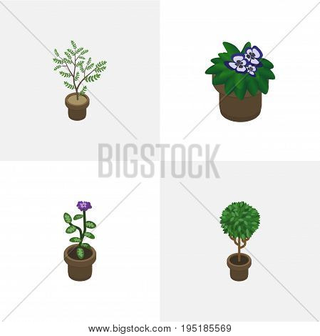 Isometric Flower Set Of Flowerpot, Fern, Flower And Other Vector Objects. Also Includes Pot, Houseplant, Flower Elements.