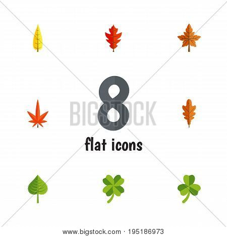 Flat Icon Leaf Set Of Alder, Linden, Hickory And Other Vector Objects. Also Includes Oaken, Hickory, Leafage Elements.