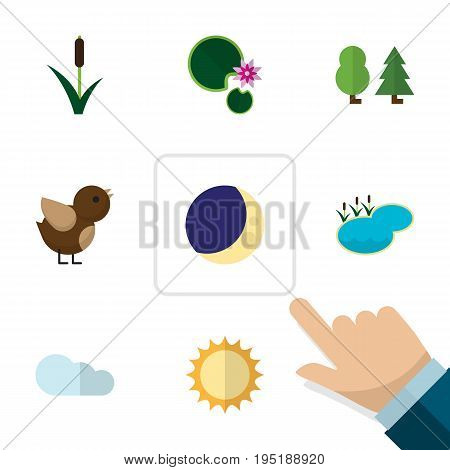 Flat Icon Natural Set Of Half Moon, Pond, Bird And Other Vector Objects. Also Includes Midnight, Lake, Cloud Elements.