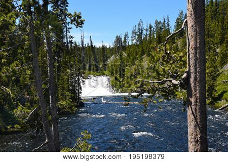 Lewis Falls in Yellowstone National Park, Wyoming. The falls drop approximately 30 feet and are easily seen from the road.