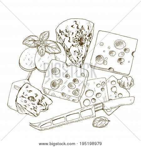 Pile of hand drawn cheese with basil and cheese knife. Vector hand drawn illustration.